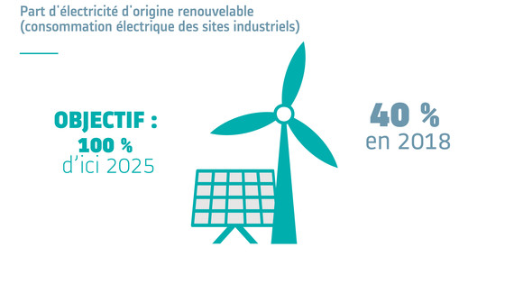 Share of electricity from renewable sources 19FR